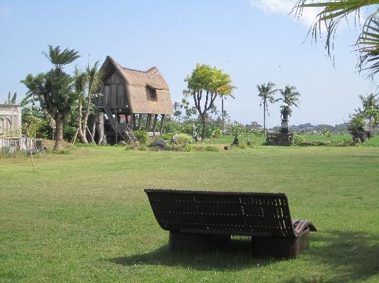 Warung D'Sawah : from my table towards the paddy fields