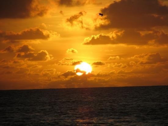 Bird Island, Seychelles: tramonto 10.05.11