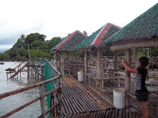 Biliran Island, Filipinas: The Bamboo Boardwalk 1