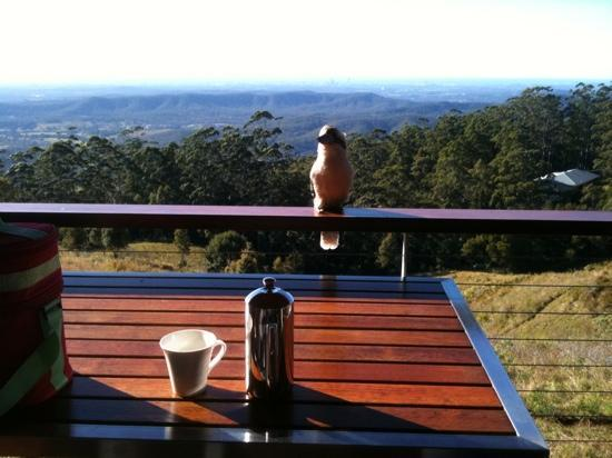 ‪‪Seaview Farm Retreat‬: breakfast on balcony with a little visitor‬