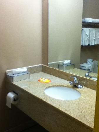 Econo Lodge: marble bath