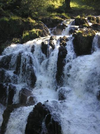 The Park Hill Guest House: Swallow Falls