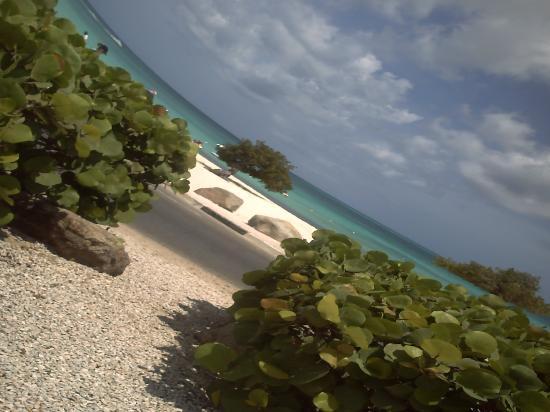 Hotel Riu Palace Aruba: Eagle Beach