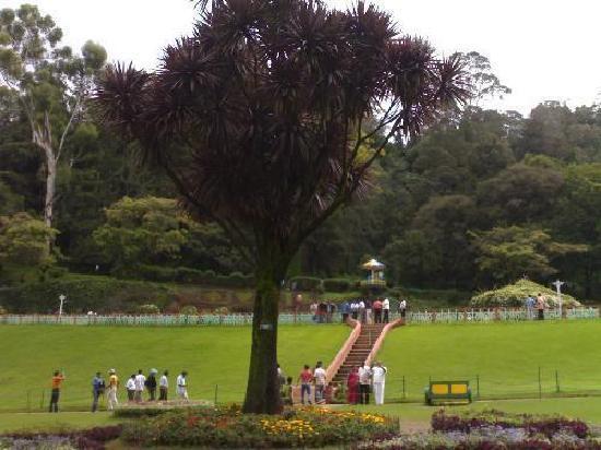 Hotel Darshan: Botanical garden Ooty