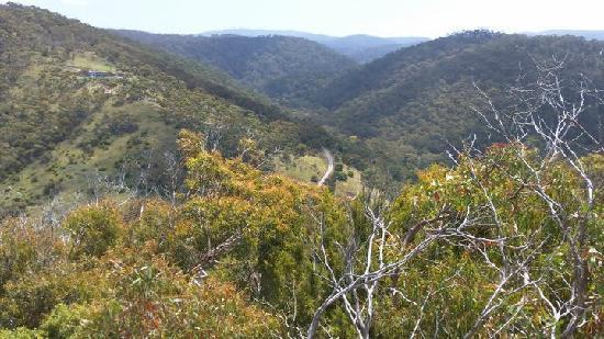 Natural Treasures Tour - Day Tours: The views around Great Ocean Road is simply amazing!