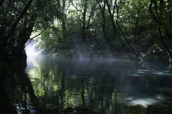 Kikuchi Valley: 光に照らされた幻想的な川面