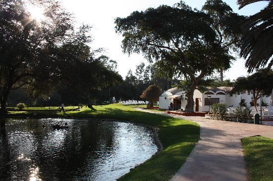 Hotel Las Dunas: bellos alrededores..