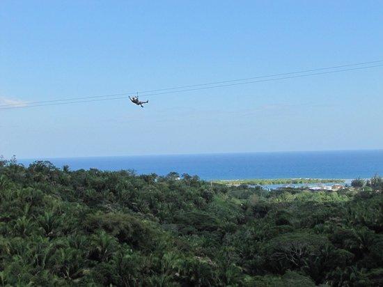 Caribe Sky Canopy Tour: Fly through the sky
