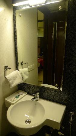 Hotel Delhi Pride: basin