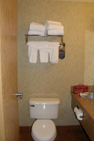 Best Western Grande Prairie Hotel & Suites : hotel room bathroom