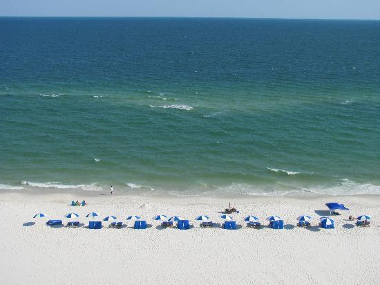 Hampton Inn & Suites Orange Beach: Oh yeah, the view!