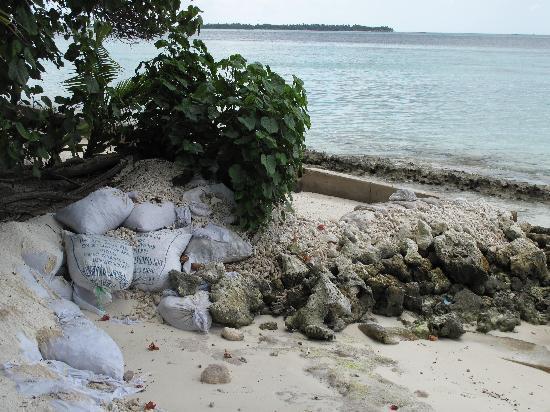 Vilamendhoo Island Resort & Spa: dommage
