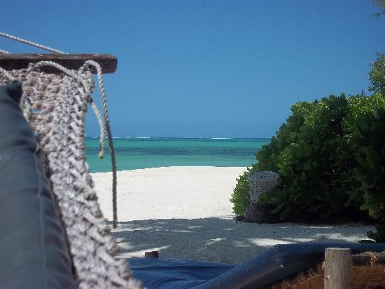 Pongwe Beach Hotel: Hammock View