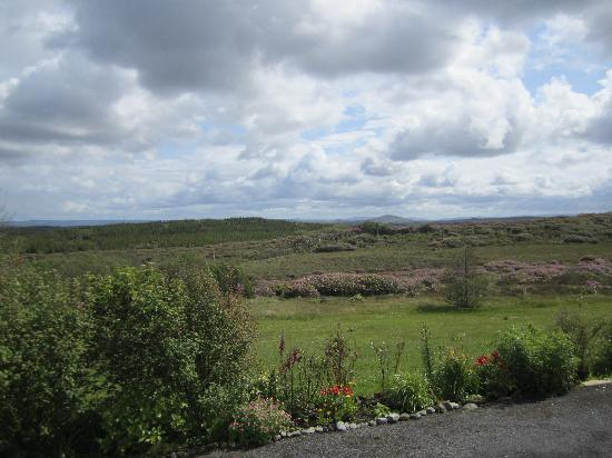 Moorland Guesthouse: Donegal