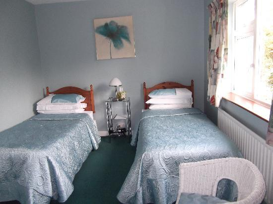 Killeen House Bed and Breakfast: Twin Ensuite
