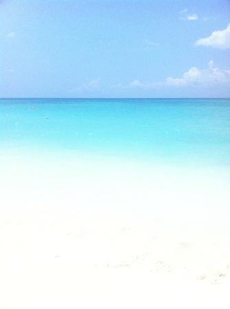 Sandos Caracol Eco Resort: playa del Carmen beach