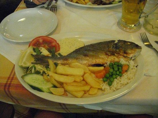 Korali Restaurant: piatto di pesce