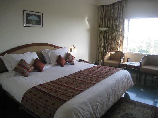 Hotel Clarks Shiraz: room