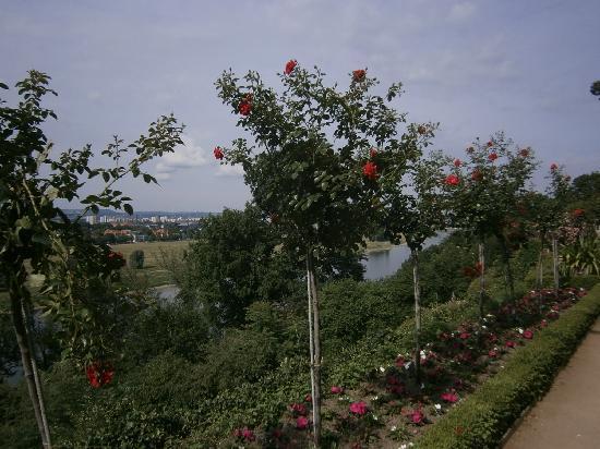 Schloss Eckberg Gardens