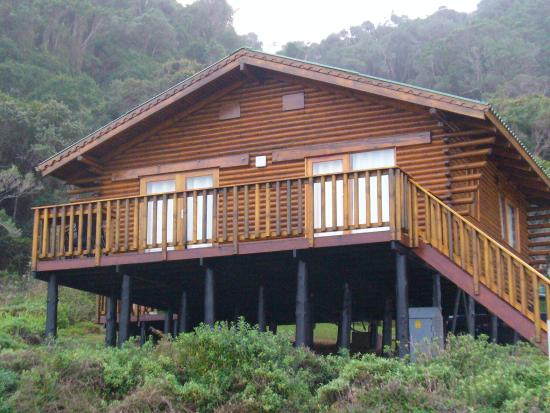 Storms River, Sydafrika: chalet, come una palafitta