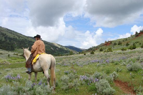 Schively Ranch: Just a sample of the terrain