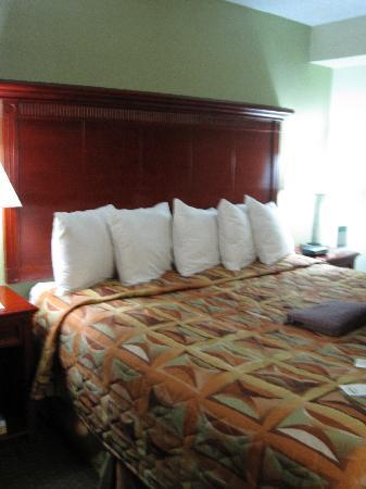 Alexis Inn & Suites Nashville Airport Opryland: Our Bed