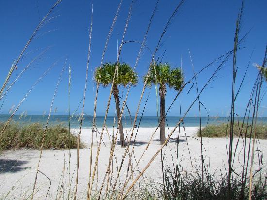 Cornerstone Beach Resort : Beautiful view!!!