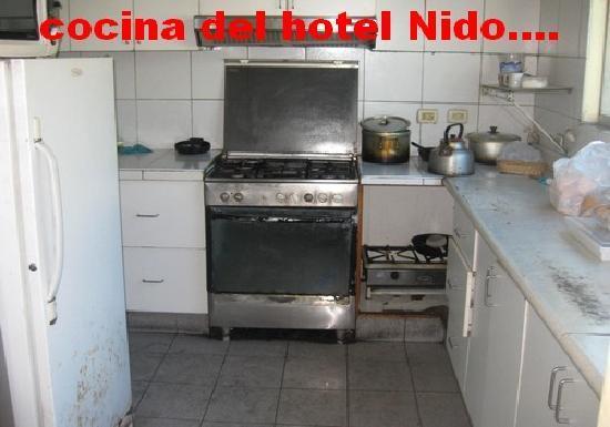 Nido Inn: la cuisine du restaurant