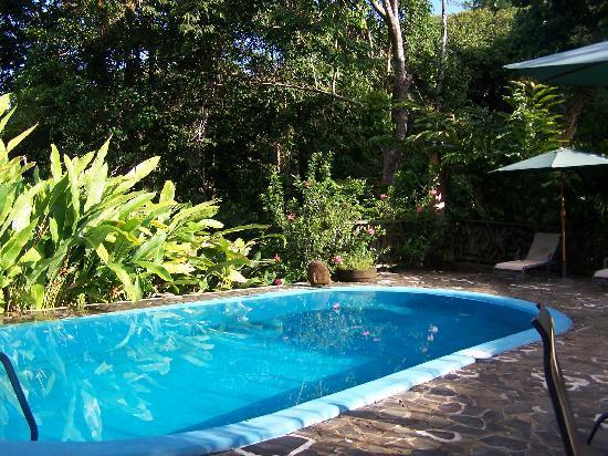 El Remanso Lodge: The Pool