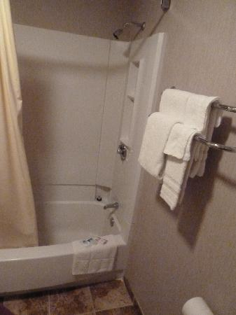 Americas Best Value Inn: Shower