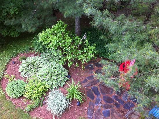 تيوليبس آند ثيستل بيد آند بريكفاست: beautiful garden