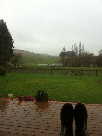 Mingary Farmstay B&B Accommodation: View from porch