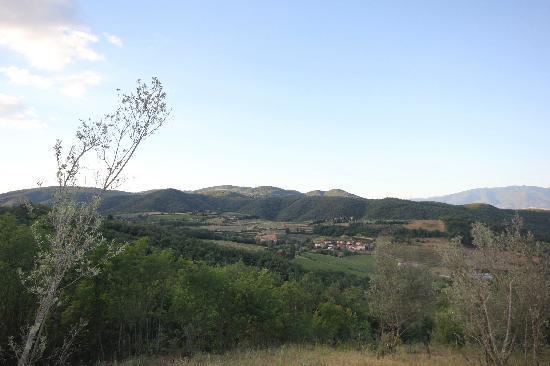 Lionforti da Vico: The view at Simonetta's!