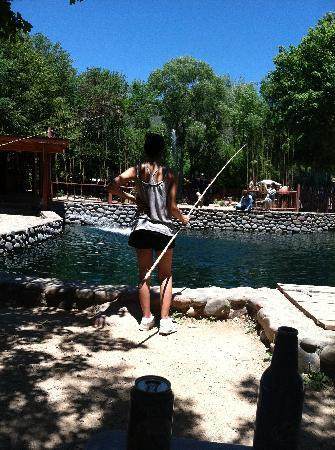 The big pond picture of rainbow trout farm sedona for Trout farm fishing