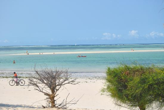 Neptune Pwani Beach Resort & Spa: Low tide - one can walk out to the reef