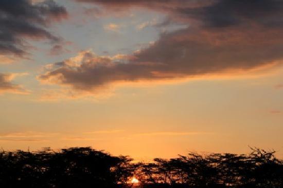 Leleshwa Camp: sunrise