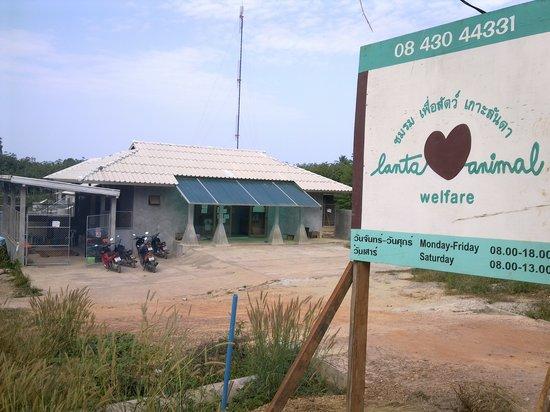 Lanta Animal Welfare: LAW headquarters and sterilisation centre
