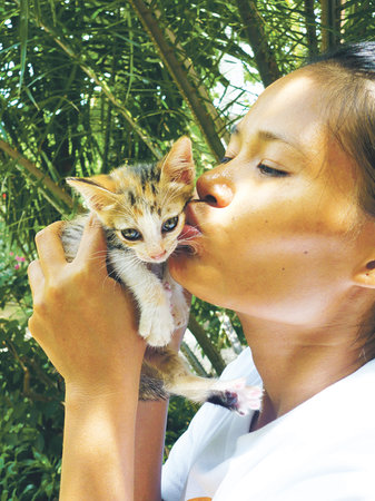Ko Lanta, Thailandia: We help to control the animal population in a humane way
