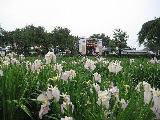 Asamai Park