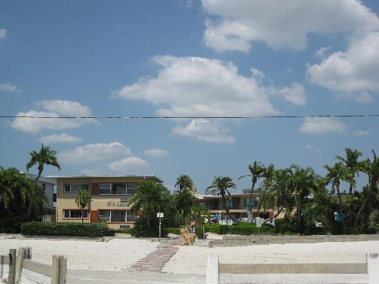 Sea Chest Motel : view from the beach