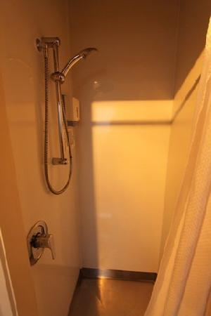 Accent on Taupo Motor Lodge: shower