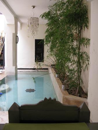 Riad Bamboo: le bassin