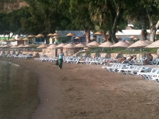 Ortakent, Turquia: La spiaggia