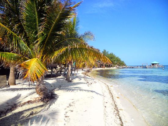 Glovers Reef Atoll, เบลีซ: ambling on the beach to the bar