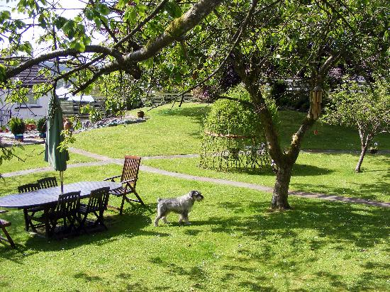 Trewan Guest House: Sit in the Garden and have a BBQ