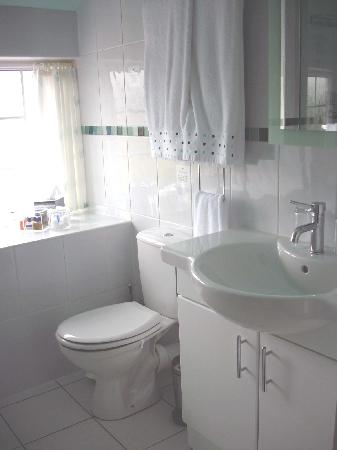 Pen Y Cefn Guesthouse: wow bathroom