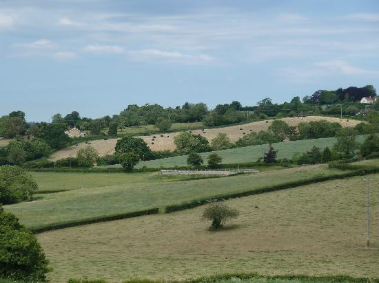 Withy Mills Farm: View from the rear