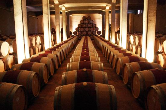 Kaiken Winery: CELLAR