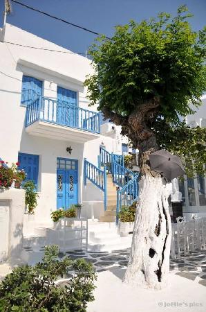 Mykonos (miasto), Grecja: Mykonos