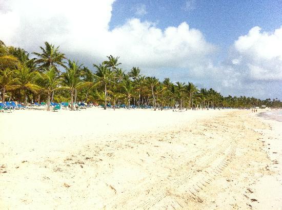 ClubHotel Riu Bambu : Beach